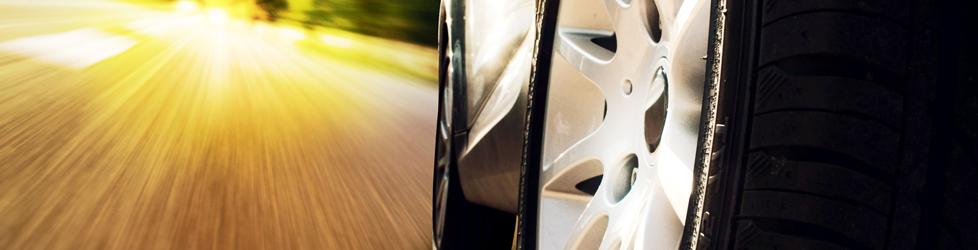 WYHLIDAL 2021 Automotive Professional